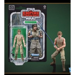 LUKE SKYWALKER DAGOBAH E5 FIGURA 15 CM STAR WARS 40TH BLACK SERIES