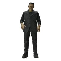 Universal Monsters Figura Ultimate Frankenstein's Monster (Color) 18 cm