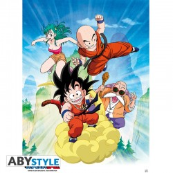 Dragon Ball Poster Grupo (52x38)