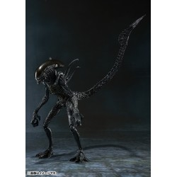 SH MonsterArts Alien Warrior Alien Vs Predator