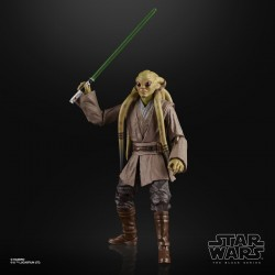 Luke Skywalker Ceremony Star Wars Black Series Hasbro